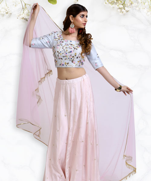 3D Pastel Embroidery on a Powder Blue Lehenga Choli-LA004